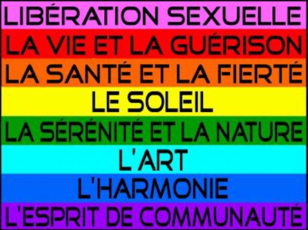 signification-couleurs-drapeau-LGBT-Vivre-Trans